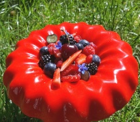 Panacotta fruits rouges