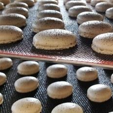 Coques macaron vanille
